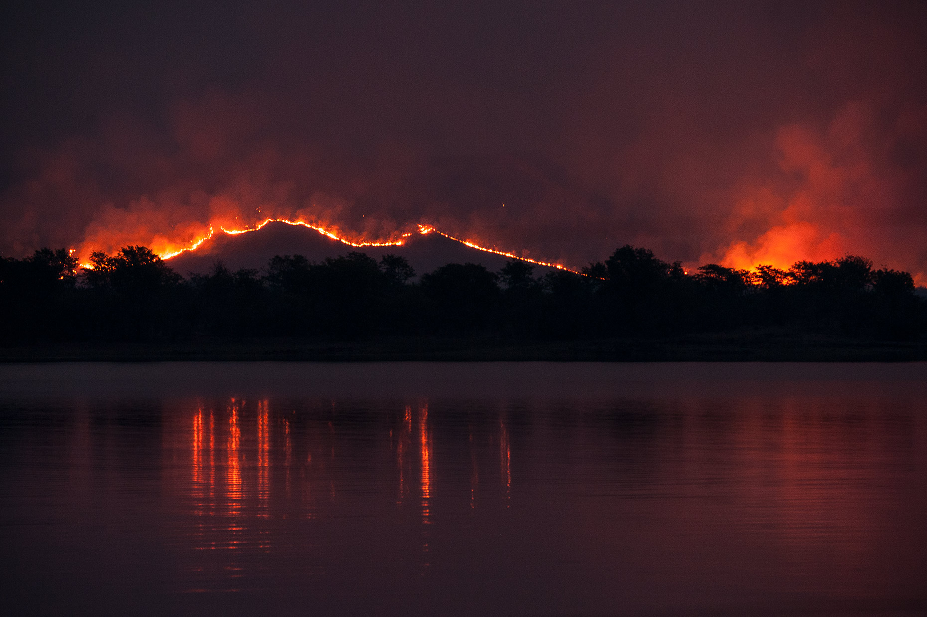 Forest Fire at Lake Kariba, Zimbabwe